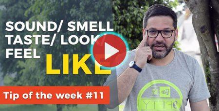 Tip of the week11 sound taste like